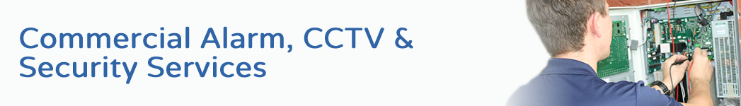 commercial alarm cctv security services
